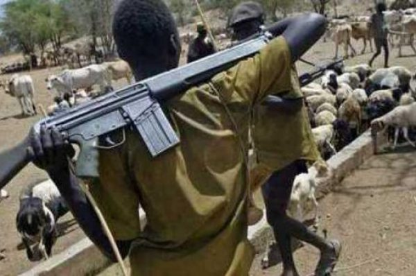 Herdsmen shoot dead one, injured policemen in Edo