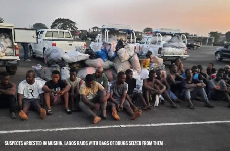 Fake police officer, soldier, corps member among 663 arrested as NDLEA raids notorious Lagos drug joints.